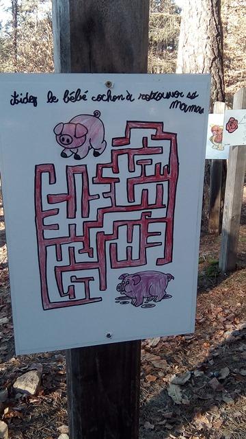 Tirelires cochons